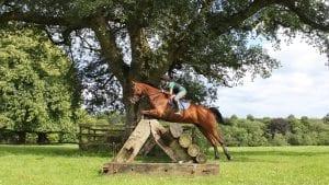vacanze studio summer camps camp scuole equitazione inglese Viva International