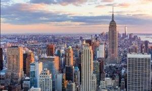 summer camp stati uniti new york viva international 2