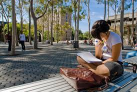 summer camp australia sidney young leaders english vacanze studio viva international 5