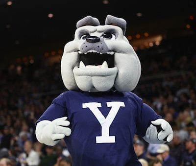 vacanze studio america yale university mascotte viva international