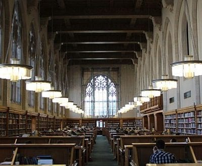 vacanze studio america yale university library viva international