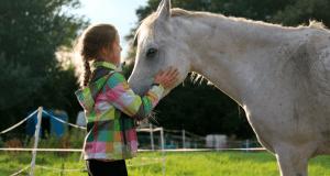 summer camp equitazione inghilterra warminster vacanze studio 2018 4