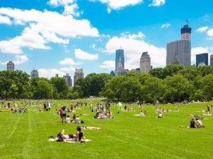 new york summer vacanze studio viva international