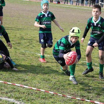 campo estivo rugby